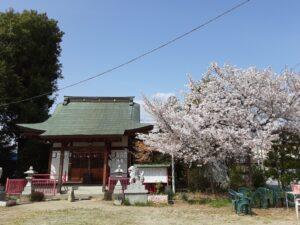 まいほーむいさわ 桜祭り